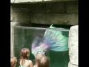 отдыхсдетьми дубаймолл отпуск2018 детям детицветыжизни