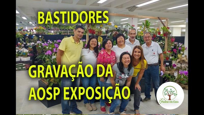 EXPOSIÇÃO DA AOSP 2019, BASTIDORES DA GRAVAÇÃO AO VIVO