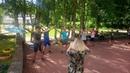 Мастер-класс в лагере от Студии танца Монплезир.