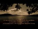 Сура 40 Гафир غافر Прощающий