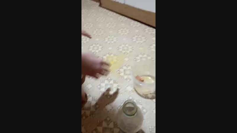 разбили яйцо