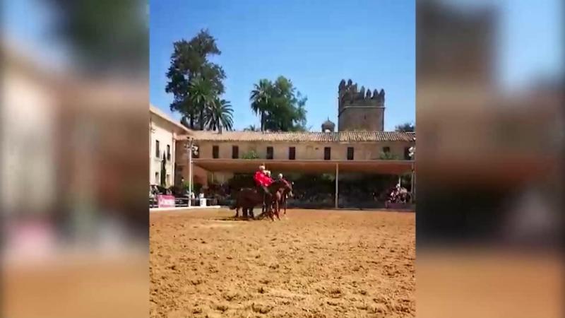 Александр Лещёв репортаж о поездке в Испанию