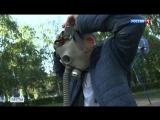 Комариный армагеддон: жители Воронежской области переоделись в костюмы пчеловодов