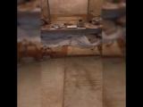 Катакомбы капуцинов