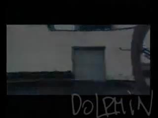 Dolphin- Осень