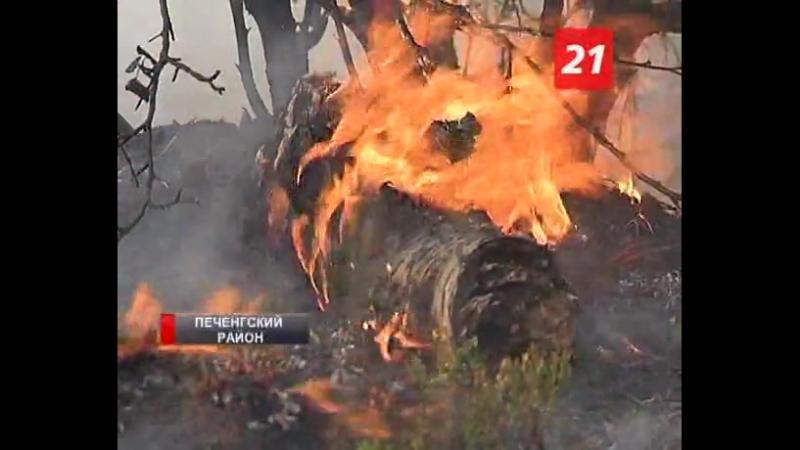 Жаркая погода затянулась. В Мурманской области продолжают гореть леса