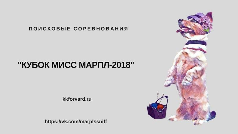 19.05.2018. Кубок мисс Марпл-2018. Соревнования по поиску. Класс Новички.