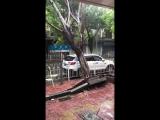 Typhoon suite, sa voiture vient de se faire
