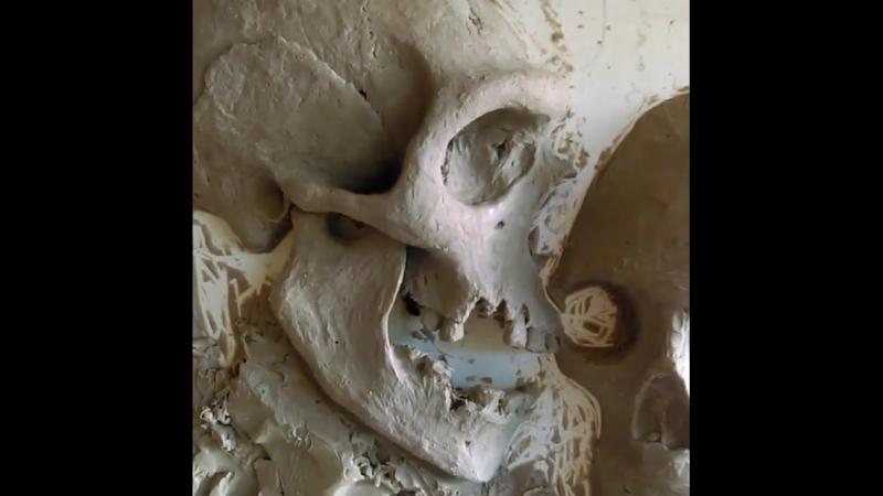 Neanderthal Cro-Magnon by Martín Riveros Baxter