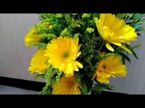 Cắm bình hoa đẹp đơn giản || Cắm hoa cúc đồng tiền mix hoa vàng anh.
