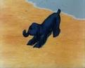 Здесь могут водиться тигры 1989 Фантастический мультфильм Золотая коллекция