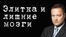 Элитка и лишние мозги НикитаИсаев