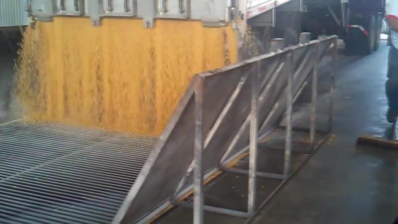 Выгрузка кукурузы из зерновоза в хранилище