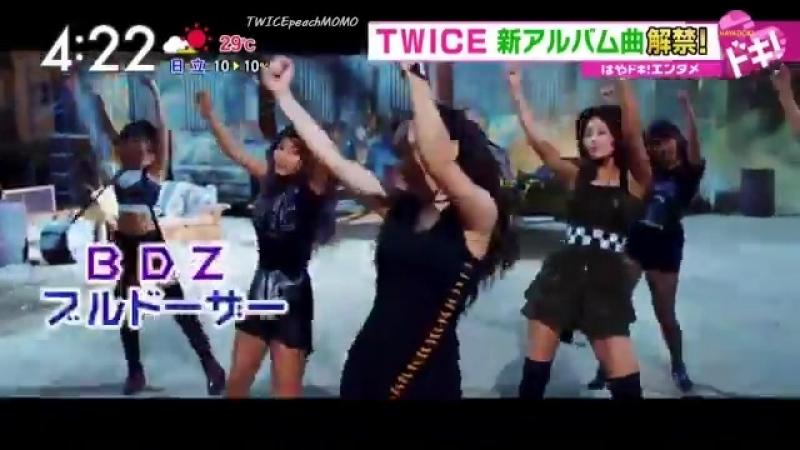 Twice on mezamashi tv