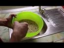 🔥 Проращивание зеленой гречки ¦ Лучший способ как проращивать зеленую гречку ¦ Дмитрий Компаниец