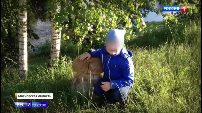 Убийство по неосторожности в Подмосковье возбудили дело после гибели 5-летнего мальчика