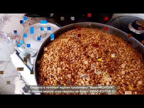 как правильно приготовить пшеницу для изготовления мицелия