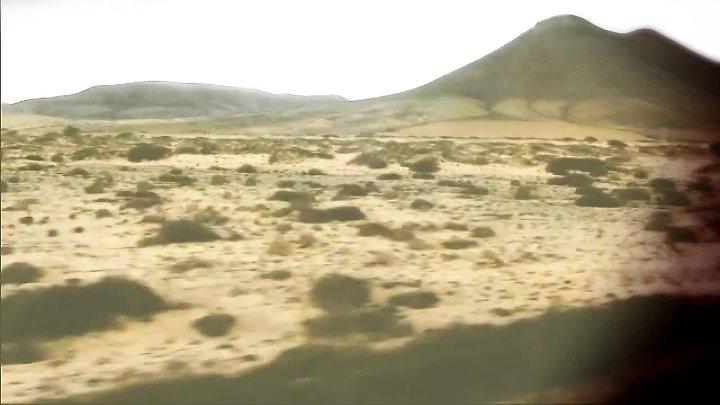 Pimp schwab а где то лсд official video 2012