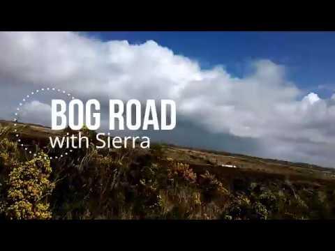 Down the Bog Road