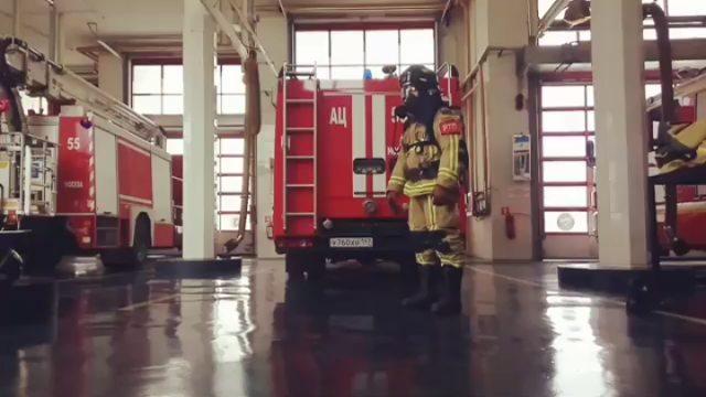 """Андрей on Instagram """"👍💪🚒 По статистике 38 пожарных в год погибают от сердечных приступов. Чтобы снизить эту цифру, был запущен 38burpees challen..."""