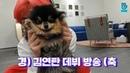 [V LIVE] BTS - 경) 김연탄 브이앱 데뷔 •̀ㅅ•́🐾 (축 (V Jimin's V with his puppy)