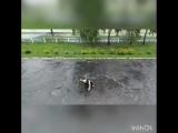 Позитив можно находить всегда и во всём ? Танец под дождём возле школы 5 в Шостке. Танец в исполнении Евгения Анисимова Источн