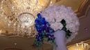 Blue Color Theme Wedding @ ROYAL ELITE PALACE