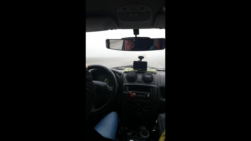ежики в тумане едут в аэропорт минвод