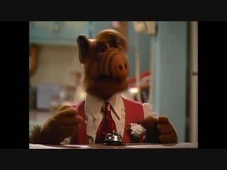 Alf Quote Season 2 Episode 10_Как поживаете
