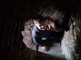 винтовая лестница минарета XI века