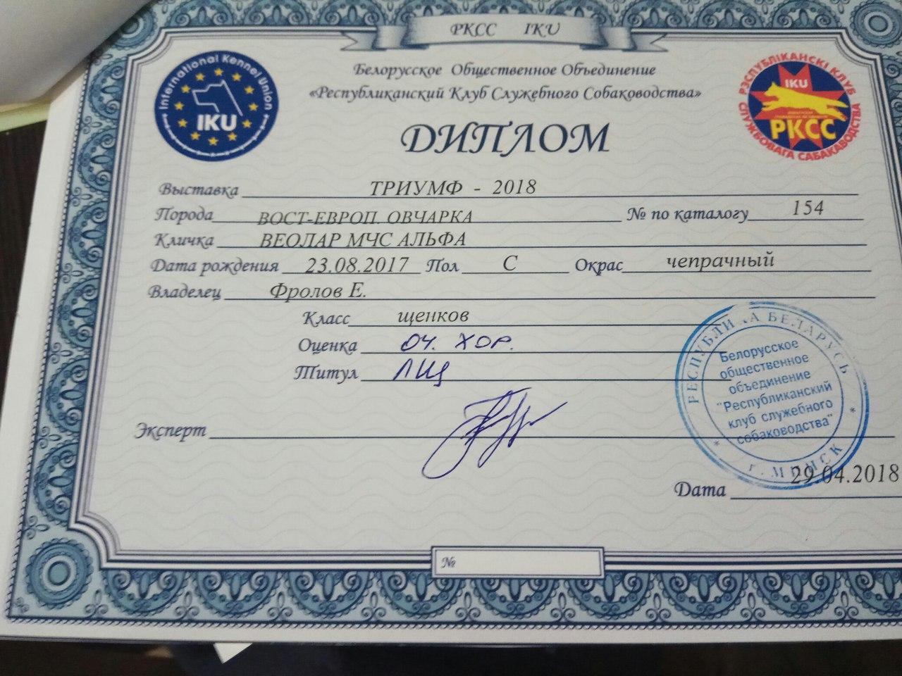 ВОСТОЧНО-ЕВРОПЕЙСКАЯ ОВЧАРКА ВЕОЛАР МЧС АЛЬФА - Страница 2 Mc21Z4o4JQg