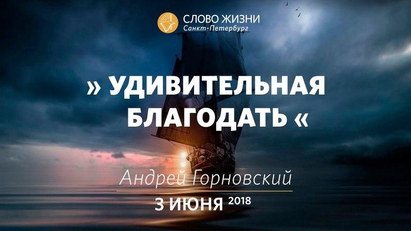 Удивительная благодать - Андрей Горновский, Слово Жизни, г. Санкт-Петербург