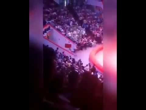 В Казанском цирке растерянный страус набежал на людей сидящих в первых рядах