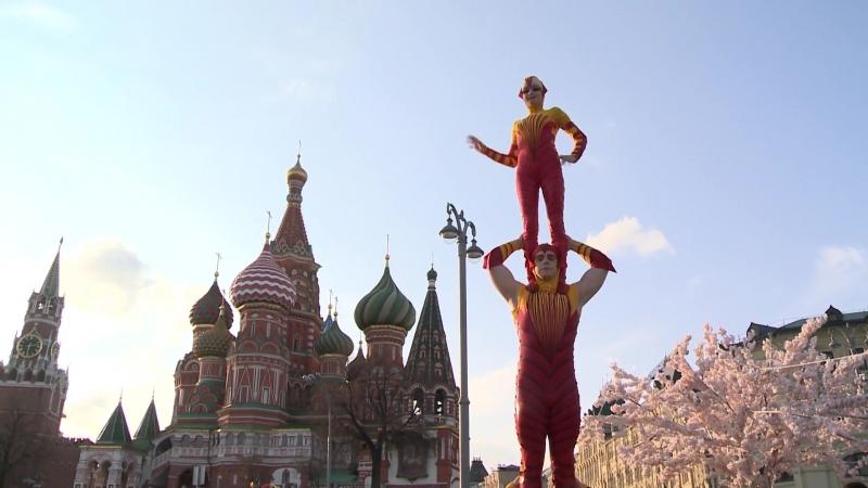 JEVEA - Официальный Поставщик Шоу OVO от Cirque du Soleil_ Знакомство с Москвой » Freewka.com - Смотреть онлайн в хорощем качестве