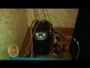Плантация конопли в Нанжуль-Солнечном