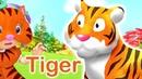 Learn alphabet with Rosie English alphabet