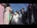 Walt Disney World Wishes Wedding | Sharra and Darin
