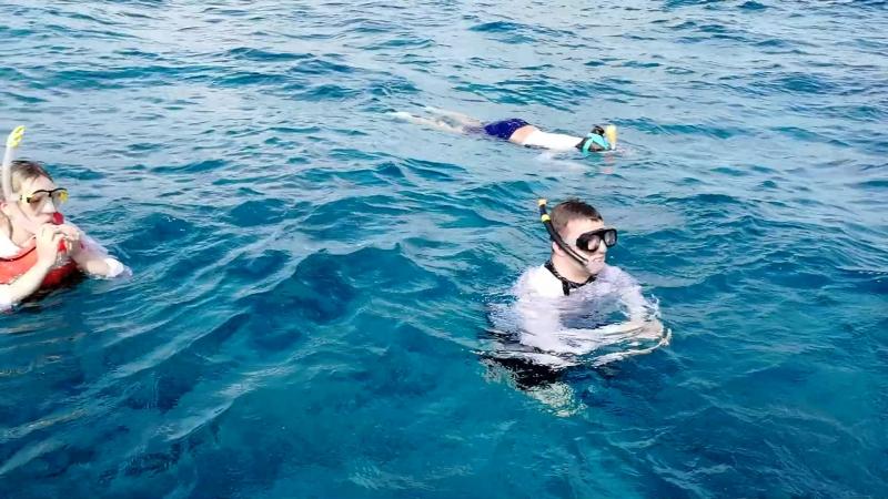 Мой гид по подводному миру.