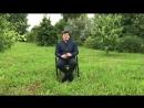 Позвоночная артерия Как я исправил зрение Головокружение Головная боль
