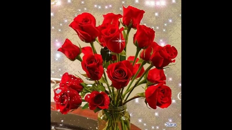 Doc396973201_463469618.mp4