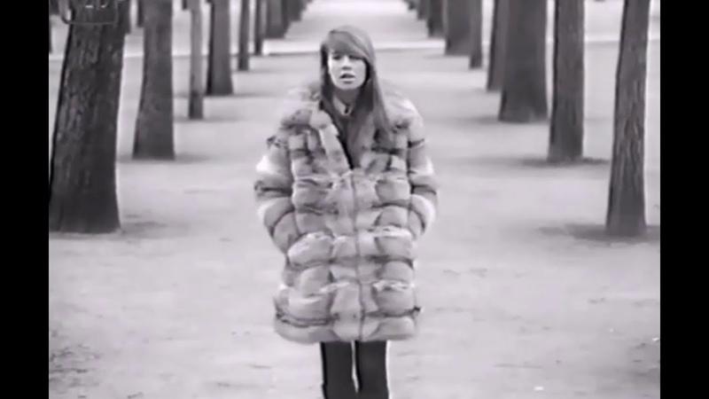 Françoise Hardy - L'Amitié (60 FPS HQ) 1965