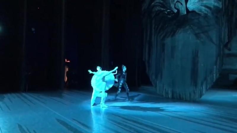 14.01.2018 Bolshoi, Odile - Yulia Stepanova, Prince Siegfried - Jacopo Tissi, The Evil Genius - Mikhail Kryuchkov (stage video)