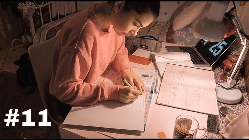 Дневник выпускницы 11 мотивация для учебы распаковка посылки