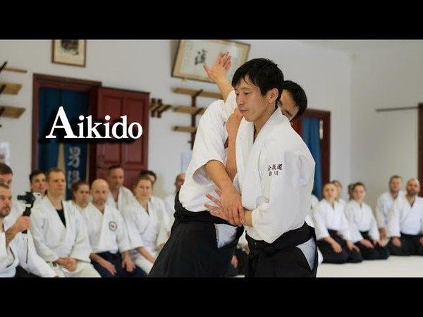 合気道 ‐ 両手取り自由技 Aikido Ryote dori in Hungary 03