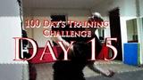 100 Day's Training Challenge. Day 15(B-Boy AVM)