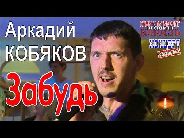 Аркадий КОБЯКОВ - Забудь (Концерт в Санкт-Петербурге 31.05.2013)