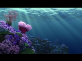 Finding Nemo - Coral Reef