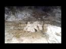 не законное вырубка леса работники лестничества Каа-Хемского лестничества, Бурен-Бай-Хаакское участковое лестничества
