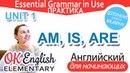 Практика к Unit 1 Глагол BE в Present AM IS ARE Уроки английского языка с нуля