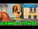 Барбоскины поют Panda E CYGO Бежим как будто от гепарда Панда